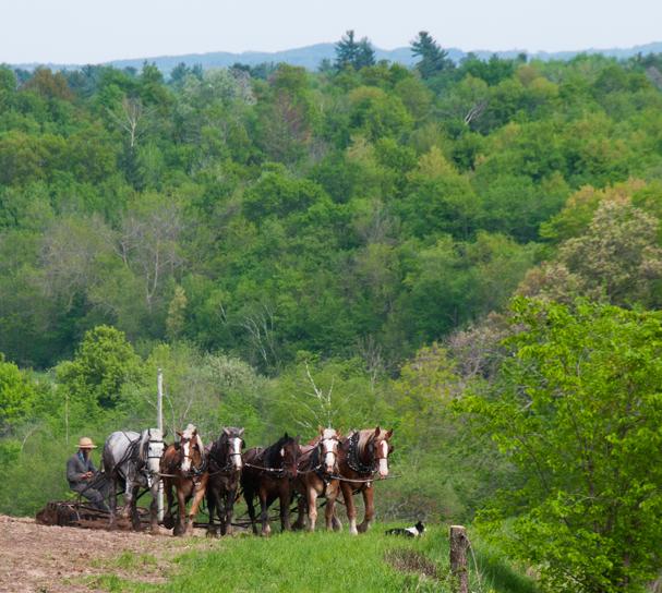 5-FarmPlowing2-100