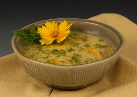 Steve Rolf - Summer Squash Soup