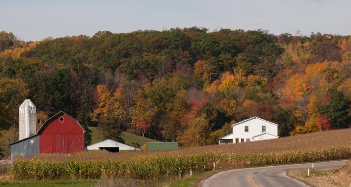 Autumn Color - Wisconsin Farm