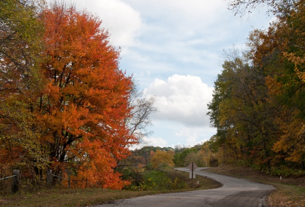 Autumn Color - Wisconsin Country Road
