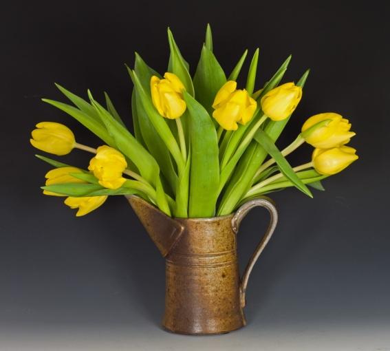 NY-Tulip1-100