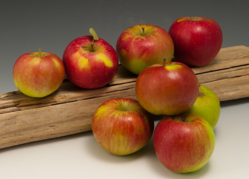 10-Apples-100