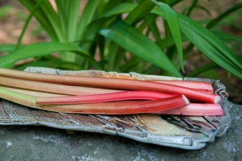 5-RhubarbTray-100